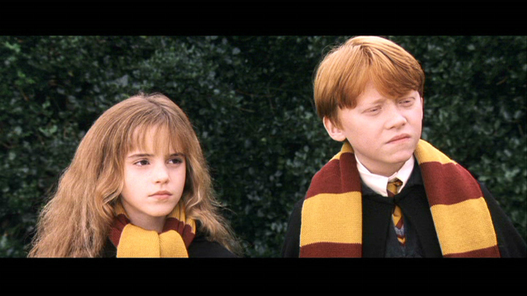ron hermione essay Hermione lets harry and ron watch her essay while she does some shopping in diagon alley then, things go south when harry and ron destroy her perfect.